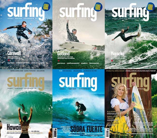 Surfing covers mosaic